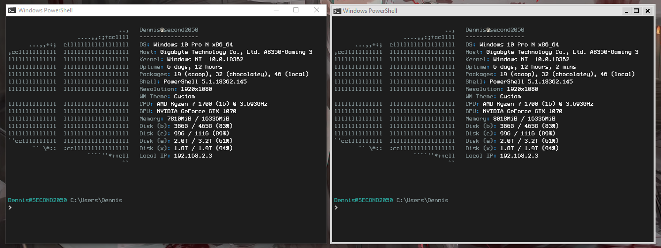 """Terminal excluded from WB10 (left) — Terminal """"skinned"""" by WB10 (right)"""